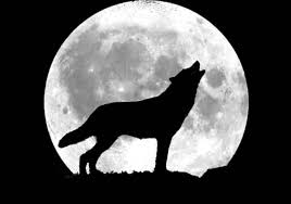 Howling 1