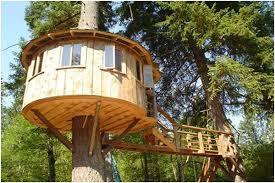 Build My House build a tree house – zand's wacky world